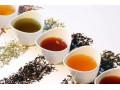 发现东湖之美:慧心雅社教你如何用冷水泡出好茶