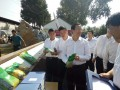 发现天中美:河南正阳县这三件宝 让农业部长也直称稀罕