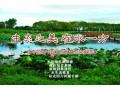 生态之美在水一方:河南正阳小岗水库,大批水鸟来栖息